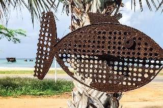Fish art and shipwreck 'Baboo'