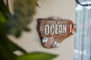 Driftwood shell sign