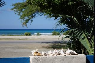 Conch shell fence decoration